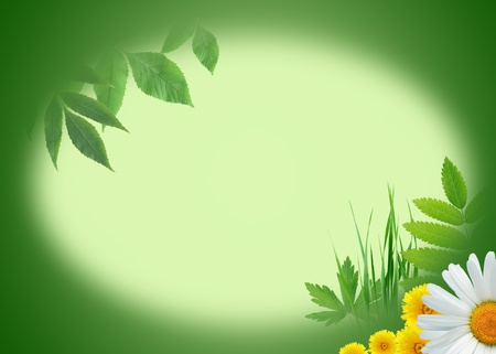 Ecology concept. Green nature background with plants and flowers. Center is blank for text photo