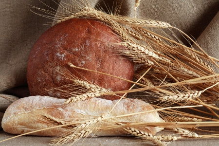 Newly baked bread and ears of wheat on canvas background photo