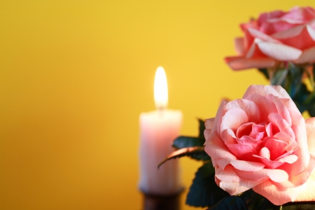 Closeup of pink roses on yellow background with lighting candle  photo