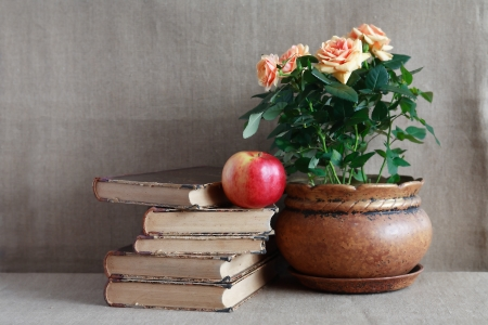 Still life with old books and potted roses on canvas background photo