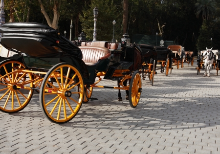 brougham: Few empty carriages with horses in park, Sevilla,Spain
