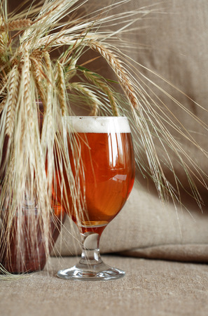 near beer: Glass of beer on canvas background near wheat ears