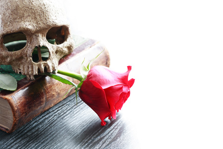 terribly: Still life with human skull on old book near red rose Stock Photo