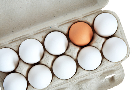 Tolerance concept. One brown egg among set of white eggs in box
