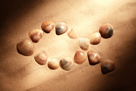 fish culture: Jesus fish symbol made from shells on sand under beam of light