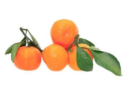 frescura: Pocas mandarinas frescura en el fondo blanco