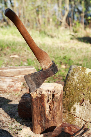 clearing: Firewood Splitting. Stack of logs with axe on green clearing in forest