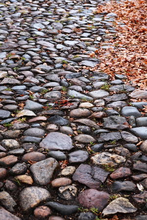 Old empty cobblestone roadway with leaves in provincial town