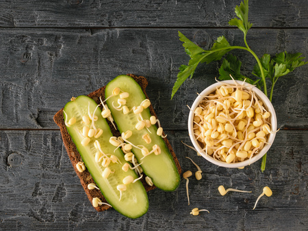 A piece of bread with cucumbers and sprouted mung beans on a dark wooden table. Dietary vegetarian food from sprouted grains. Reklamní fotografie