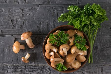 Bunch of parsley next to a bowl filled with fresh forest mushrooms. Natural vegetarian cuisine. The view from the top.