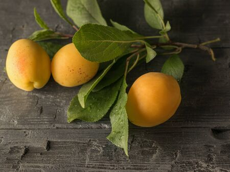 Ripe apricots and a twig with leaves on a wooden table. Fresh fruit harvest. Imagens