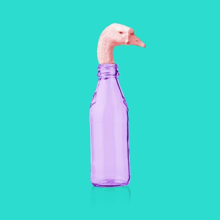 Modern art collage. Goose head coming out of the bottle. Minimalism.