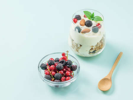 A bowl of raspberries and currants and a glass of yogurt on a blue background. Vegetarian food with prebiotics. Reklamní fotografie