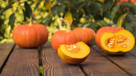Whole and cut pumpkin fruits on a wooden table against a tree background. Autumn pumpkin harvest.
