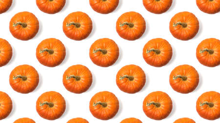 Seamless pattern of fresh orange pumpkins isolated on a white background. Isolated pumpkin fruit.