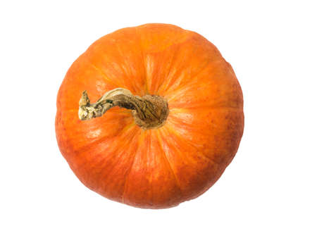 Ripe pumpkin with a dry tail isolated on a white background. Isolated pumpkin fruit. The view from the top.