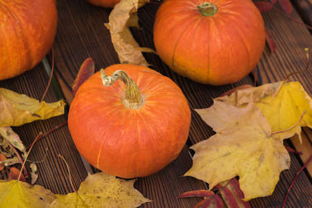 Large fresh ripe pumpkins with autumn leaves on a wooden table. Autumn pumpkin harvest.
