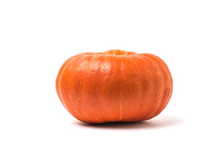 Huge pumpkin isolated on a white background. Isolated pumpkin fruit.
