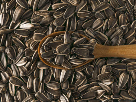Background of large sunflower seeds with a wooden spoon. The fresh yield of sunflower. Stock fotó - 159499983