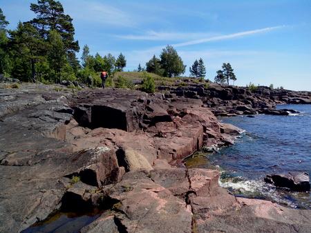 Mighty trees grow along the shores of Valaam Island. The wonderful island Valaam is located on Lake Lodozhskoye, Karelia. Balaam - a step to heaven.