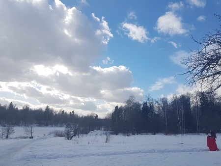 Winter landscape, trees in the snow against the blue sky in the clouds Stockfoto