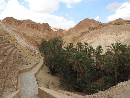 Mountain oasis of Chebika with palm trees in sandy Sahara desert, blue sky, Tunisia, Africa