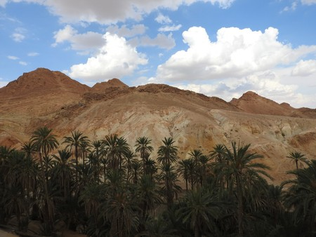 Mountain oasis of Chebika with palm trees in sandy Sahara desert, blue sky, Tunisia, Africa