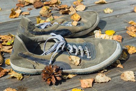 outworn: Autumn sneaker.