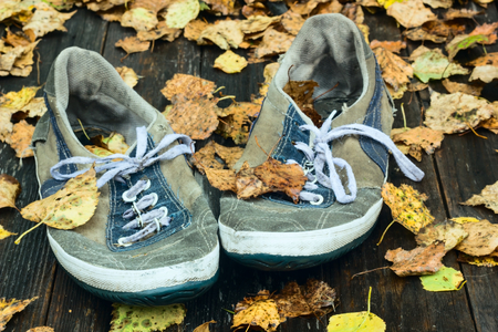 tat: Autumn leaves with a sneaker