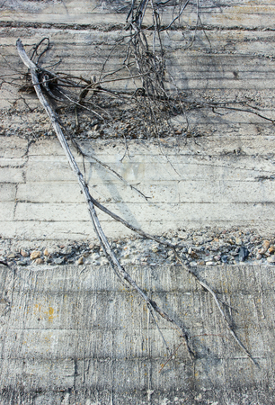 backstop: Concrete wall.Backround.