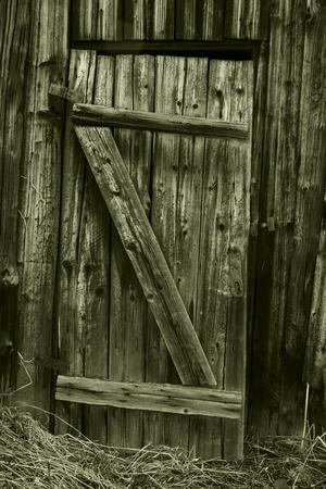 backstop: Wooden background.Door.