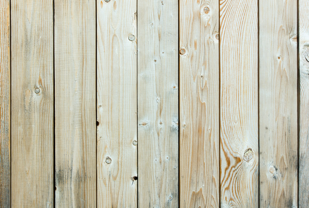backstop: Wooden background.