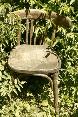 broken chair: Old broken chair.