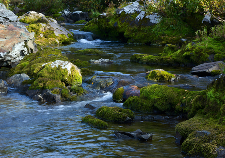 forceful: Mountain rocky river. Stock Photo