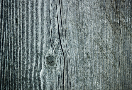 ligneous: Wooden unpainted background.The structure of the wood