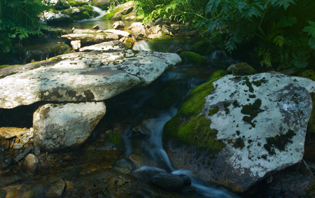 A fragment of forest stream with a rocky riverbed.