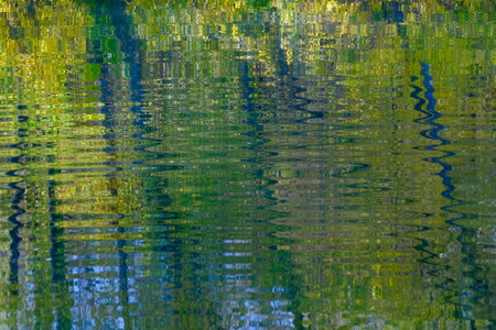 Reflections of trees in the water.Diffuse image.