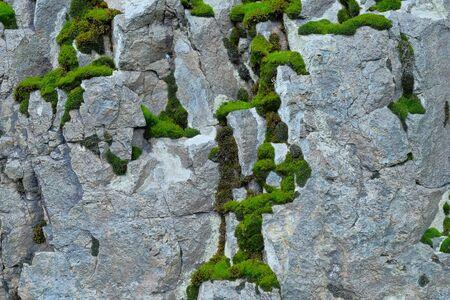 Fragment of a rock close up. Standard-Bild