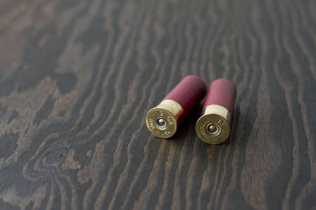Two 12 gauge shotgun shells