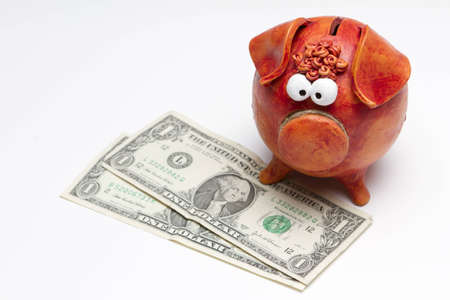 us dollar: Piggy bank with US dollar bills