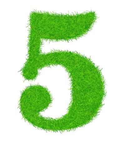 brightly: The number of 5 is decorated brightly a green grass.