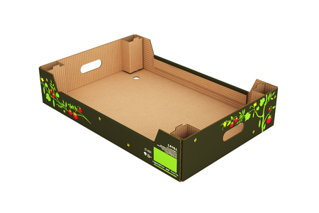 blanks: cardboard tray box for vegetables and fruit without shadow on white background 3d