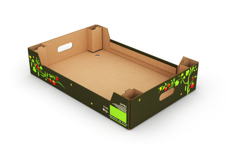 blanks: cardboard tray box for vegetables and fruit isolated on white background 3d