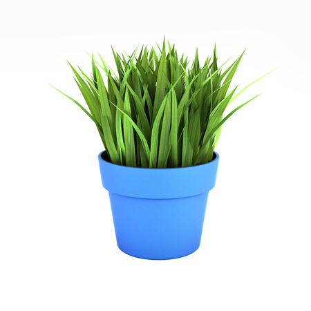 flowerpot with green grass without shadow on white bakground 3d