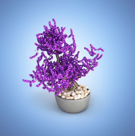 Bonsai potted tree on blue gradient background without shadow 3d