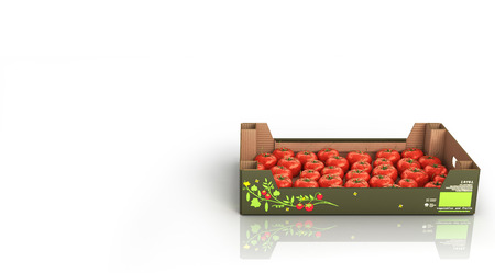 Fresh tomatos in box isolated on white background with reflection and place for text 3d