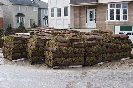 construction 27 grass.