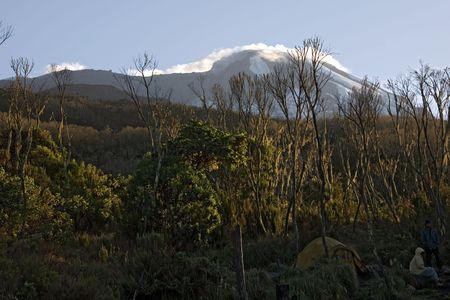 kilimanjaro: kilimanjaro 004 machame hut camp. Stock Photo