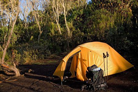 kilimanjaro: kilimanjaro 005 machame hut camp tent.