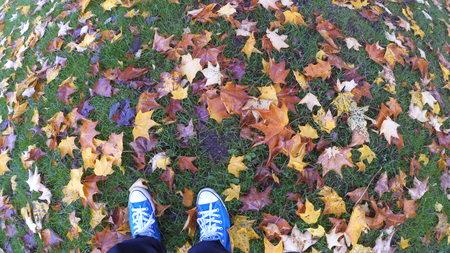 footwear: Autumn Footwear Stock Photo